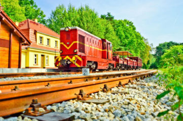 Narrow gauge railroad  (EN)